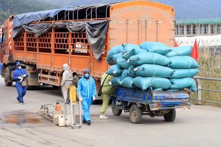 Hình ảnh: Đề nghị tháo gỡ khó khăn trong vận chuyển vật tư nông nghiệp phục vụ sản xuất và chế biến nông sản số 1