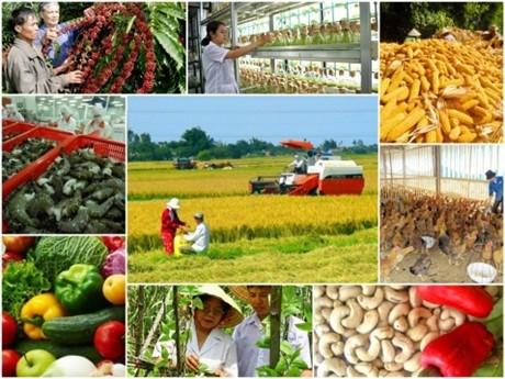 """Hình ảnh: TP. Hà Nội sẽ tổ chức """"Diễn đàn trực tuyến Hà Nội 2021 - Kết nối cung cầu sản phẩm OCOP và nông sản, thực phẩm an toàn số 2"""